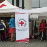 nahled-den prvni pomoci 2013